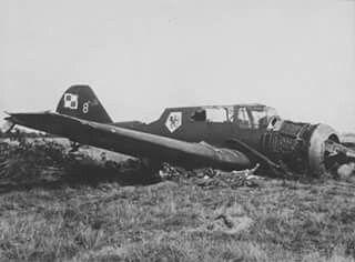 PZL 23 Karas. Polaco.