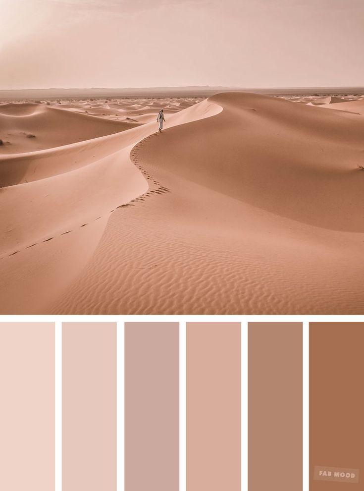 Blush tones : Pretty blush color scheme ,blush color combinations #blush #color #colorpalette