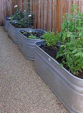 Galvanized Water Tank / Trough Veggie Gardens