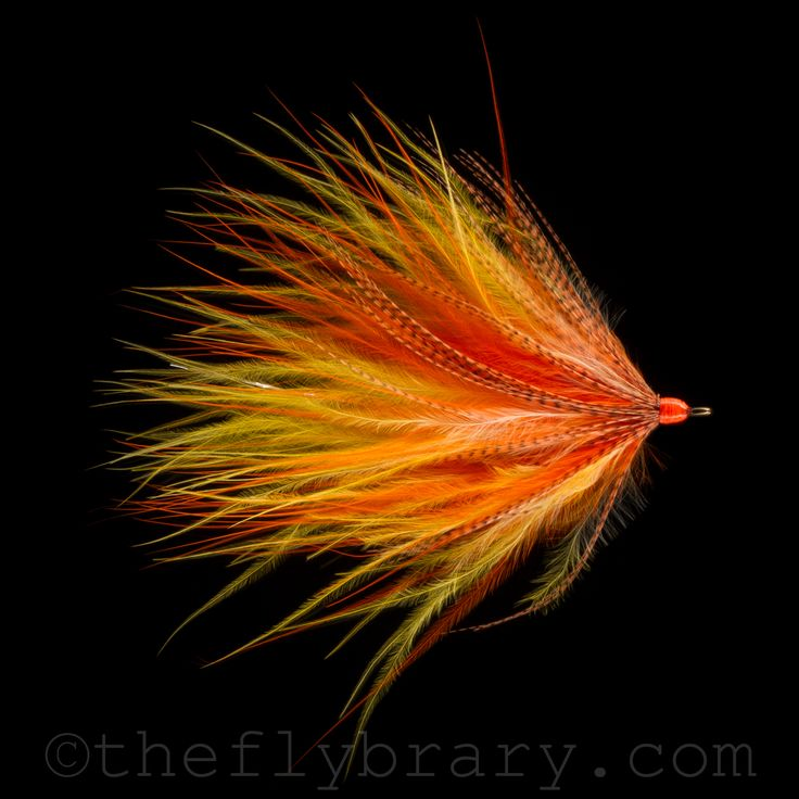68 best for fly tying images on pinterest fishing fly for Feather craft fly fishing