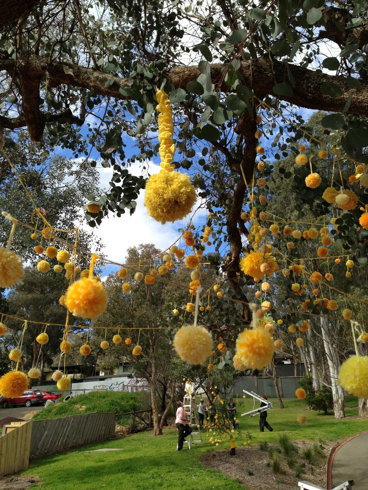 Yellow tree Hurstbridge Yarnbombers