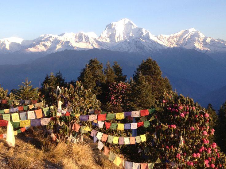 Nepal anapurna circle trek