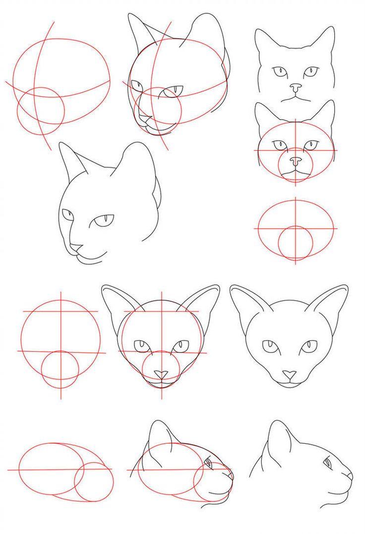 коты картинки поэтапно для природная достопримечательность расположенная