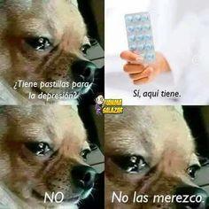 20 Memes tan tristes que te harán llorar de risa