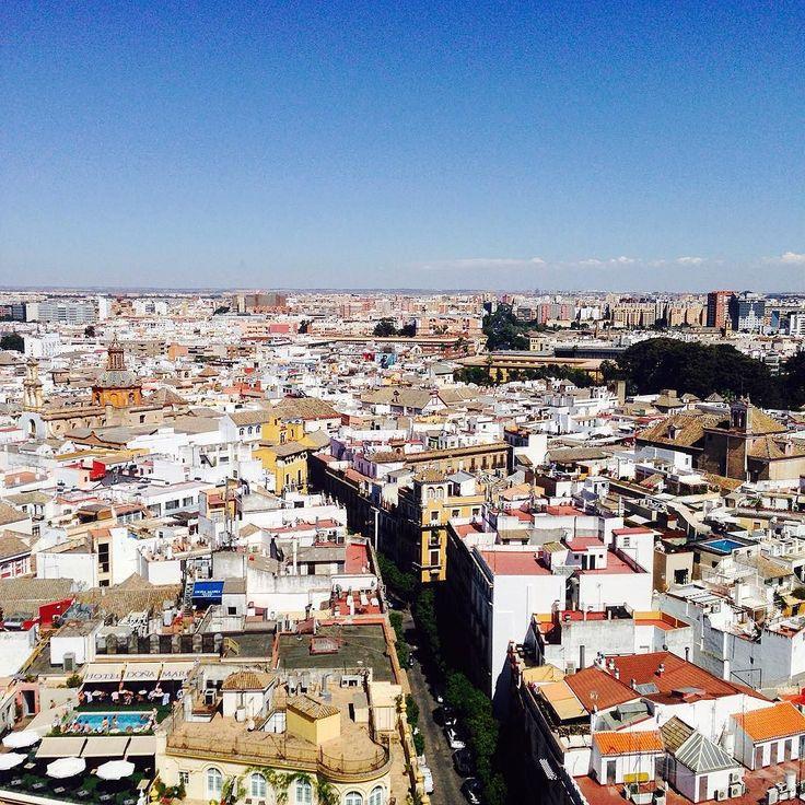오늘따라 세비야에 가고싶다.  스페인이 그리운게 아니라 세비야 세비야 세비야가 그립다고.  #Spain #España #Sevilla #Seville by yenaaaku