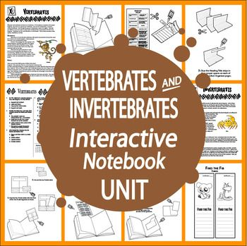 Nonfiction Informational Text, hands-on Literacy in Science activities, and FOUR Interactive Notebook assignments to teach students about the Structural and Behavioral Adaptations and characteristics of these Vertebrates and Invertebrates.