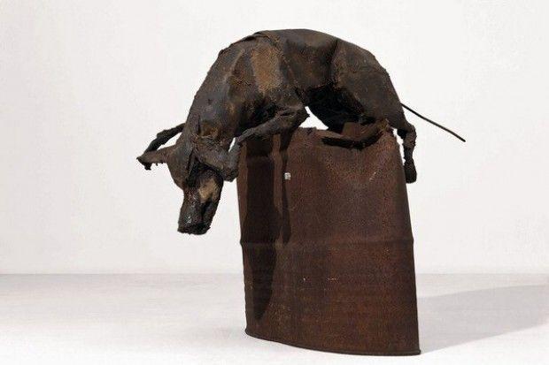 Risultati immagini per velasco vitali cani