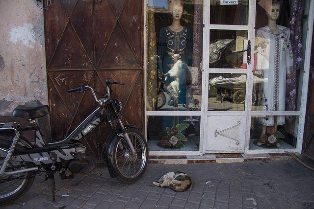 marrakech morocco world people reflex  by www.laiaserch.com
