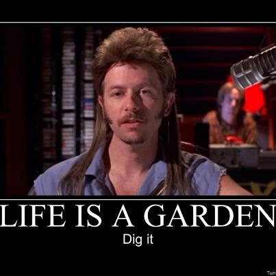 Joe Dirt that is where my brother got it from!