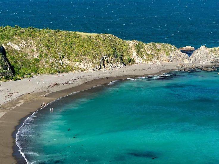Breaker Bay, Wellington,New Zealand #googleguides Jonathan Usher (@jonathanushernz) on Instagram