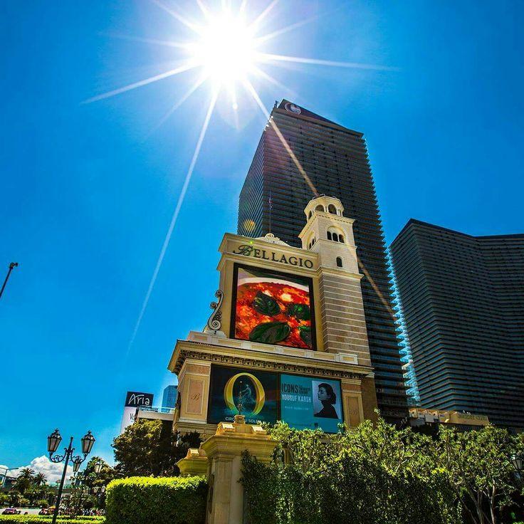 Edc Orlando Hotel Deals