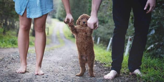 아이가 왜 없느냐는 질문을 자주 받던 부부가 강아지와 가족사진을 찍었다(화보)