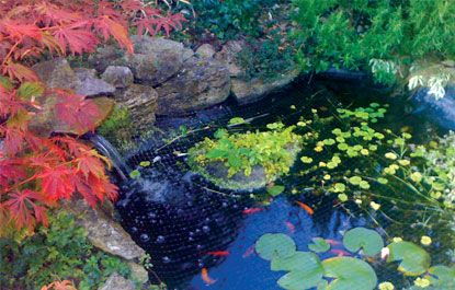 30 best floating islands floating wetlands improving for Koi pond water quality