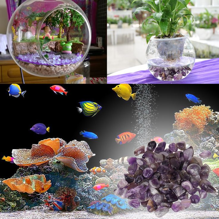 Online Get Cheap Fish Tank Diy -Aliexpress.com | Alibaba Group