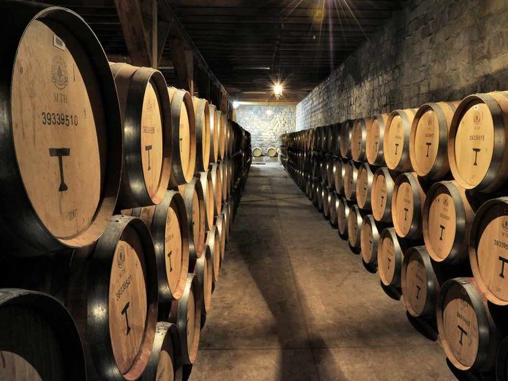 Cellars | Viña Santa Rita Inglés