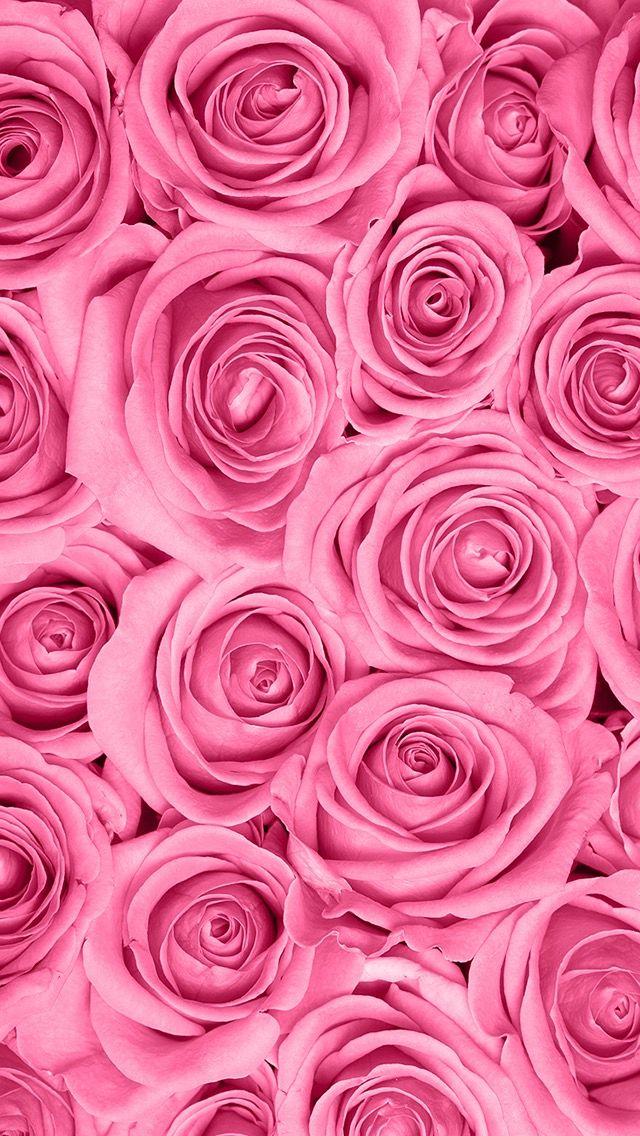помощью красивые картинки цветы на ватсап взять образец