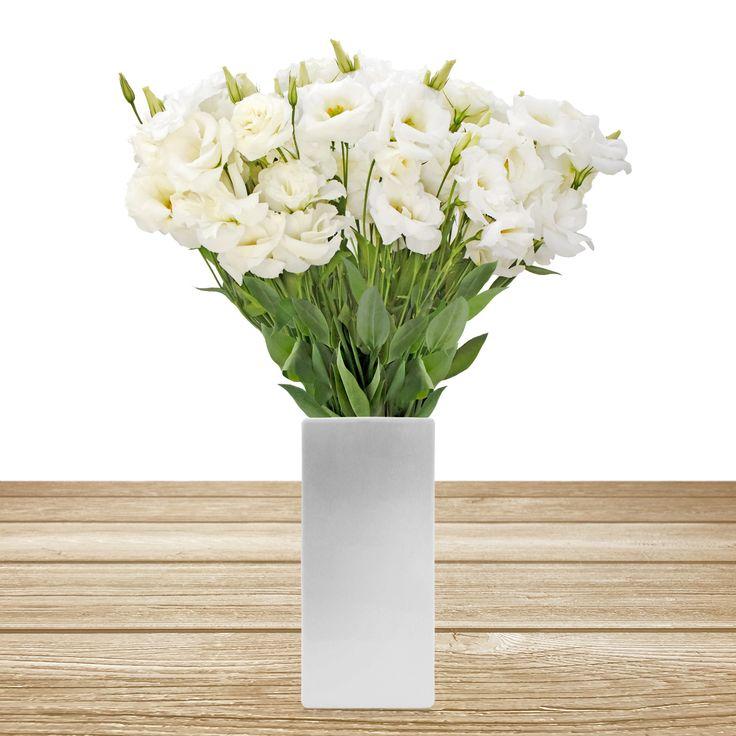 WHITE LISIANTHUS #roses,#pinkflowers,#gardening,#plants,#love,#bridal,#holidays,#anniversarygifts,#gift,#partyideas,#partydecorations,#fasshion,#christmas,#homedecor,#events,#giftsforher,#cooking,#fasshion,#style,#shopping,#onlineshopping,#online,#disney,#disneyland,#oprah,#usa,#costco,#sams,#art,#artist,#miami,#texas,#washingtondc,#newyork,#atlanta,#dogs,#family,#unitedstates,#lasvegas,#orlando,#chicago,#sandiego,#california,#sanfrancisco,#houston,#design,#losangeles,#fall,#summer,#winter