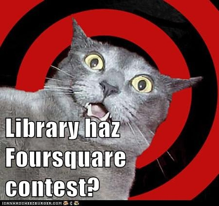 Foursquare meme: Funny Things, Evil Cat, Kitty Cat, Funny Cat, Cat Meow, Foursquare Memes, Bad Cat, Cat Bent, Libraries Memes