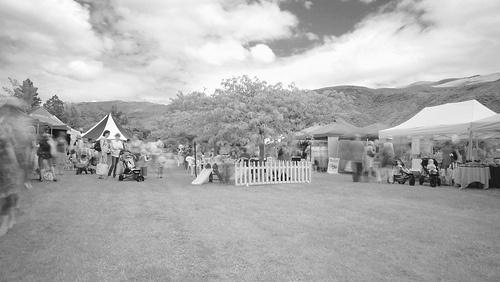 Festive Fete / Olssens Vineyard / Bannockburn / NZ