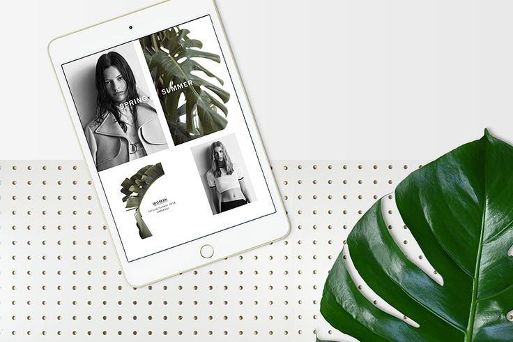 NEWSLETTERS | Smack Bang Designs