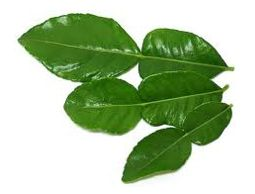 Lime leaves (or daun jeruk in Indonesian) is a must ingredient for soto's soup.