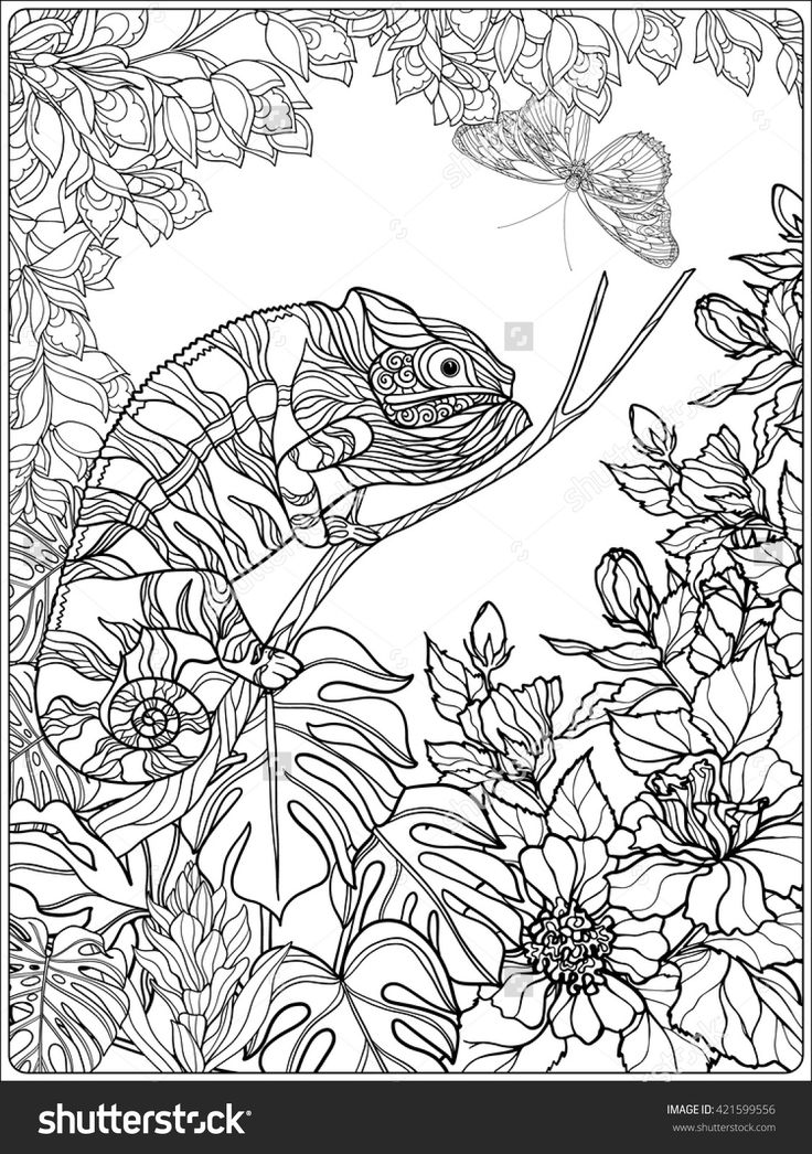 Tropical Wildlife And Plants Coloring Page Shutterstock 421599556