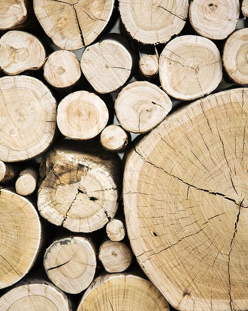 wood, logs, pattern, design, nature, photography