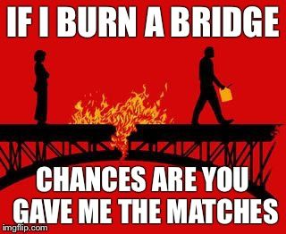Image tagged in bitches burn bridges