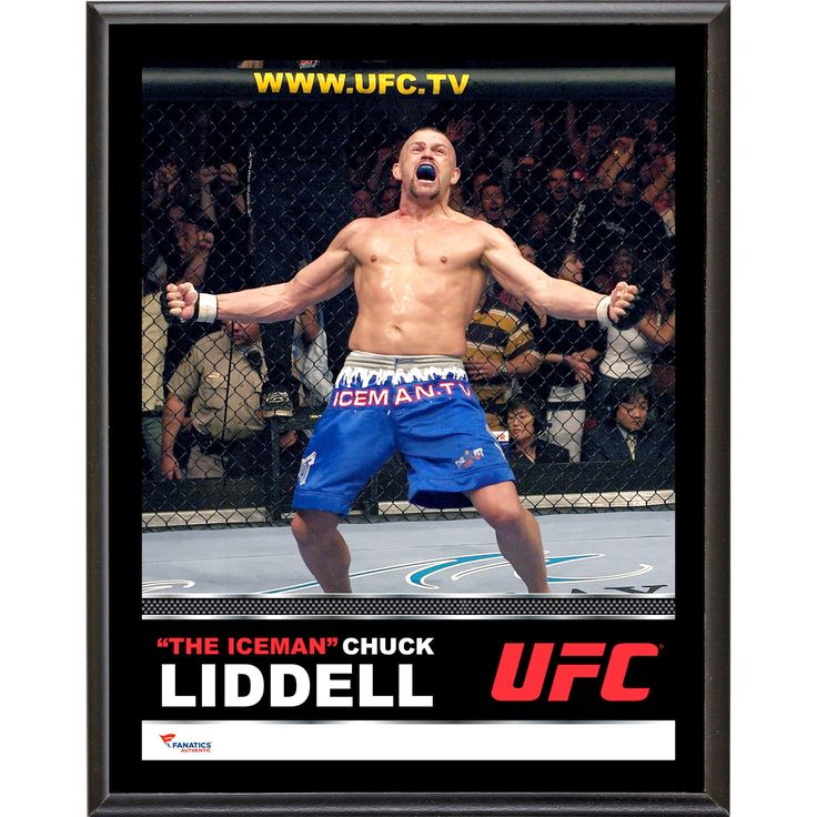 Chuck Liddell Ultimate Fighting Championship Fanatics Authentic 10.5'' x 13'' Sublimated Plaque - $23.99