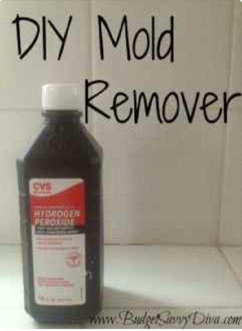 17 Best Ideas About Remove Black Mold On Pinterest Clean