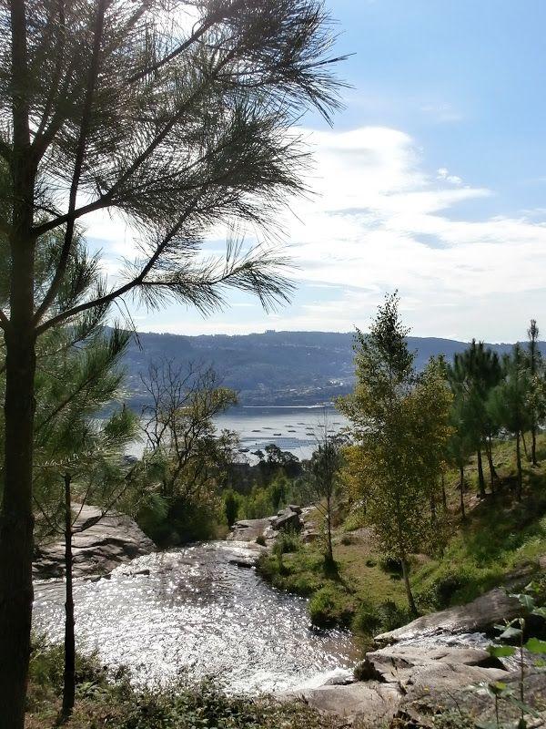 1000 Lugares En Galicia Cascada Molinos Y La Poza Da Moura En Domaio Moa Cascadas Sitios Para Visitar Paisajes