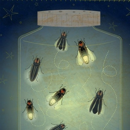 The enlightened fireflies: via darling Jules ( the diversion project blog)