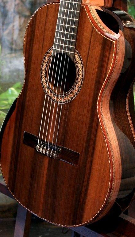 Macassar ebony guitar that would