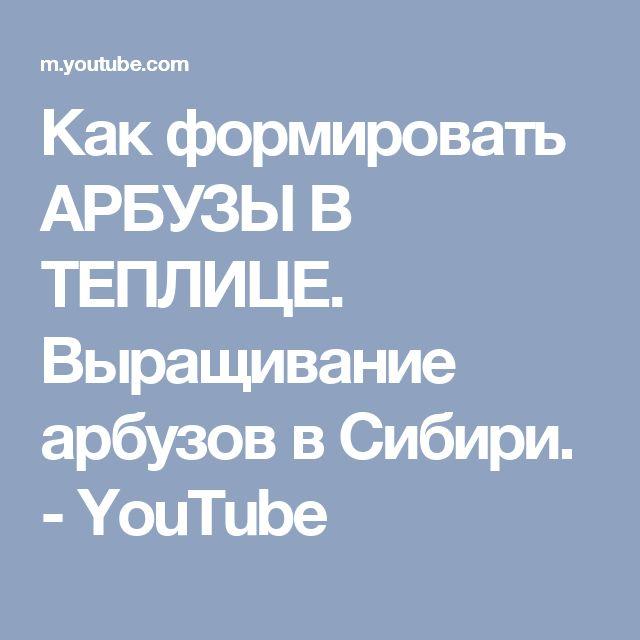 Как формировать АРБУЗЫ В ТЕПЛИЦЕ. Выращивание арбузов в Сибири. - YouTube