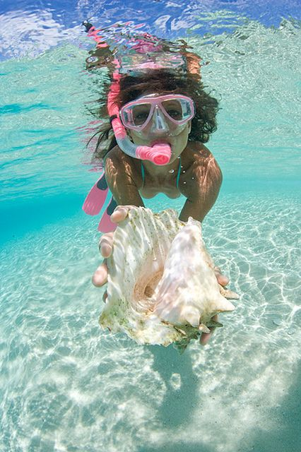 Snorkeling! I want to do this one day!