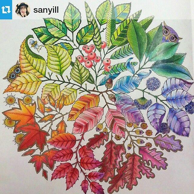 Adult Coloring Pages Books Color Pencil Art Colored Pencils Secret Gardens Ps Mandala Meditation Johanna Basford Garden