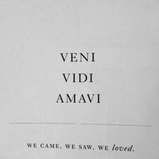 VENI VIDI AMAVI - We came, we saw, we loved.