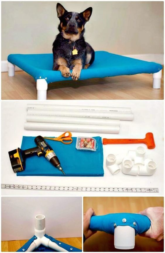 Dog Cots, Diy Dog Bed, Pet Beds, Diy Stuffed Animals, Dog Supplies, Pet Care, Best Dogs, Your Dog, Bed Ideas
