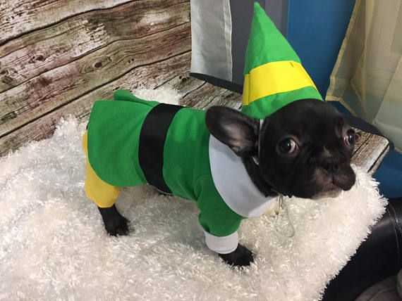 Bud The Elf Bud The Elf Dog Outfit Christmas Dog Outfit Buddy