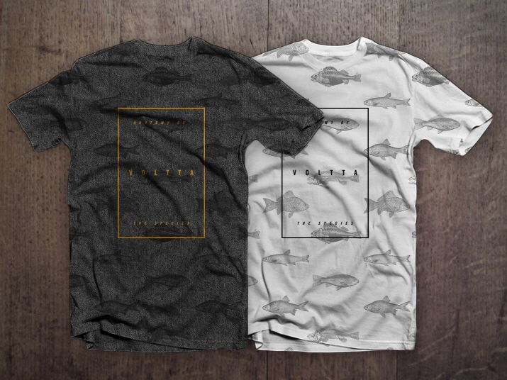 Anatomy of the species. ¡New Collection! www.voltta.com.co