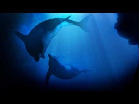 Echoes In The Deep - Ambient Ocean Music (Relaxation Track)
