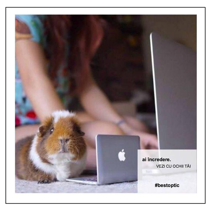 • Ridică ochii din calculator din când în când sau ia mici pauze, pentru a ajuta mușchii ochilor să se relaxeze. • Reglează dimensiunea fontului în documentele afișate pe ecran, astfel încât să poți citi totul ușor și fără efort. • Clipește regulat pentru a menține umezeala globului ocular. • Asigură-te că ecranul, tastatura și mouse-ul sunt dispuse corect. Adoptă o poziție de ședere corectă din punct de vedere ergonomic. #destiut #ochisanatosi #bestoptic