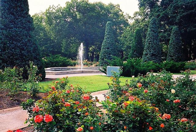 Tulsa Municipal Rose Garden at Woodward Park