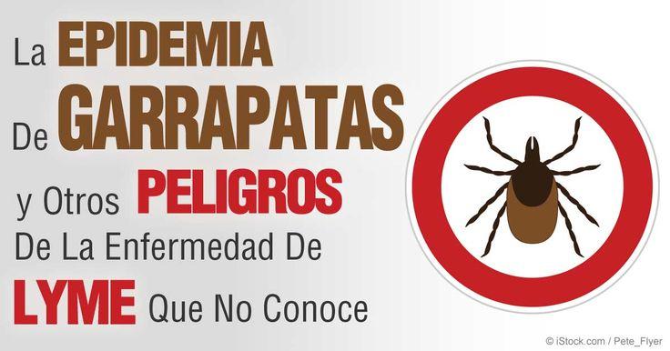 Según los CDC, se estima que 300,000 personas son diagnosticadas con la enfermedad de Lyme cada año. http://articulos.mercola.com/sitios/articulos/archivo/2015/07/29/epidemia-de-garrapatas-y-la-enfermedad-de-lyme.aspx