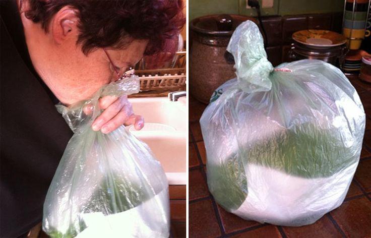 Yeşilliklerin Daha Uzun Süre Taze Kalması İçin Kolay Çözüm