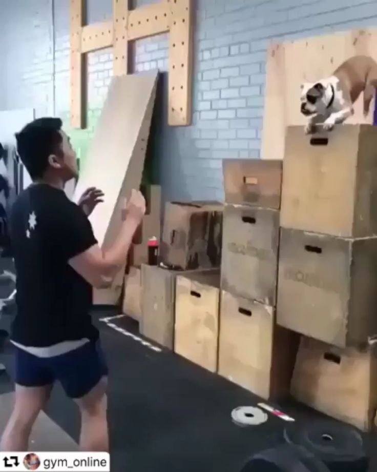 Trust jump
