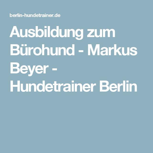 Ausbildung zum Bürohund - Markus Beyer - Hundetrainer Berlin
