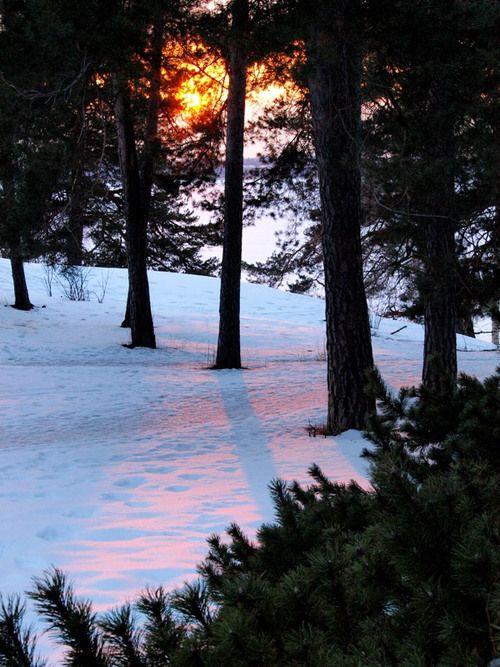 Sun reflection on the snow -Munkkiniemi, Helsinki - Finland