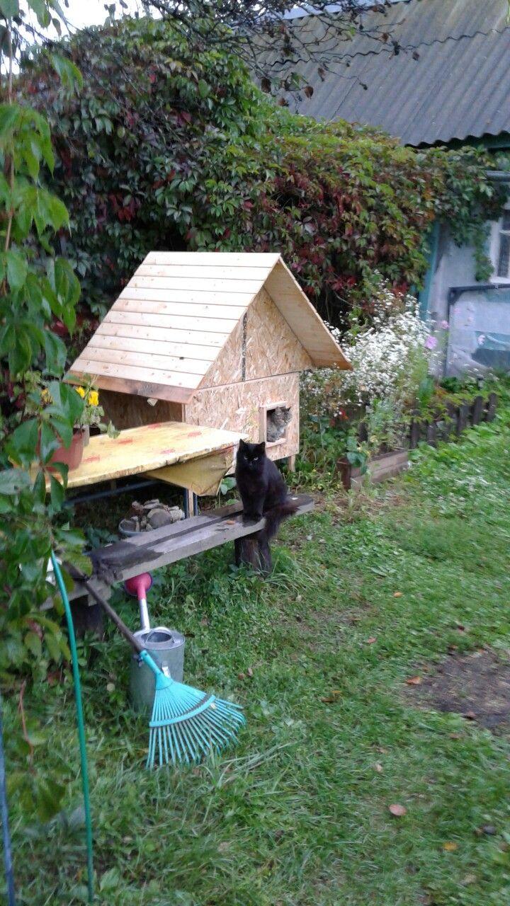 Кошкин дом 2
