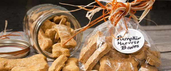 Pumpkin Dog Biscuits Recipe - Genius Kitchen